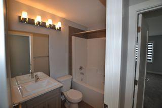 Photo 19: 8404 218 Street in Edmonton: Zone 58 House for sale : MLS®# E4170207