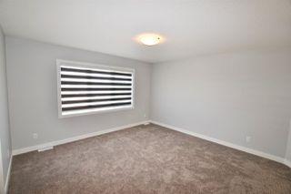 Photo 21: 8404 218 Street in Edmonton: Zone 58 House for sale : MLS®# E4170207