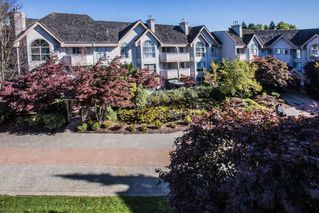"Photo 1: 303 7161 121 Street in Surrey: West Newton Condo for sale in ""HIGHLANDS"" : MLS®# R2412471"