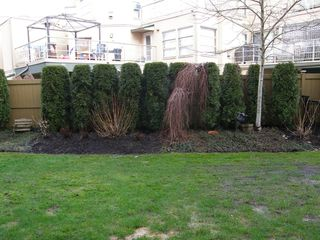 Photo 5:  in MAGNOLIA GATE: Home for sale : MLS®# V991869