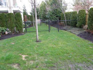 Photo 3:  in MAGNOLIA GATE: Home for sale : MLS®# V991869