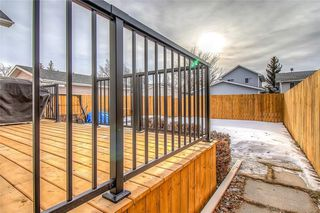 Photo 38: 67 MARTIN CROSSING Park NE in Calgary: Martindale Detached for sale : MLS®# C4283188