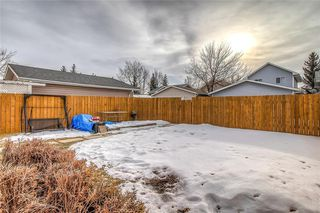 Photo 39: 67 MARTIN CROSSING Park NE in Calgary: Martindale Detached for sale : MLS®# C4283188