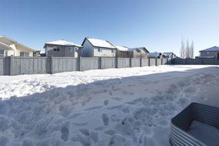 Photo 3: 9431 209 Street in Edmonton: Zone 58 House Half Duplex for sale : MLS®# E4187023