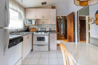 Photo 4: 3 Rosswood Crescent in Toronto: Bendale House (Bungalow) for sale (Toronto E09)  : MLS®# E4932683