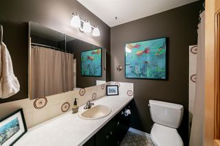 Photo 15: 4703 40 Avenue in Edmonton: Zone 29 House for sale : MLS®# E4173238