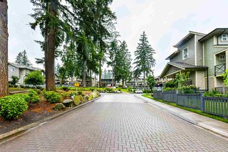 """Photo 32: 69 5957 152 Street in Surrey: Sullivan Station Townhouse for sale in """"Panorama Station"""" : MLS®# R2466563"""