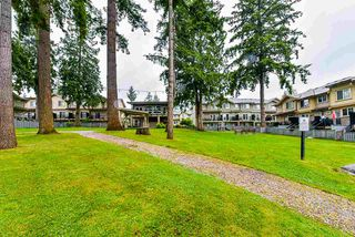 """Photo 28: 69 5957 152 Street in Surrey: Sullivan Station Townhouse for sale in """"Panorama Station"""" : MLS®# R2466563"""
