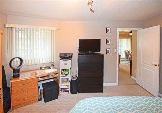 Photo 14: 1 9938 80 Avenue in Edmonton: Zone 17 Condo for sale : MLS®# E4178764