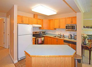 Photo 3: 1 9938 80 Avenue in Edmonton: Zone 17 Condo for sale : MLS®# E4178764