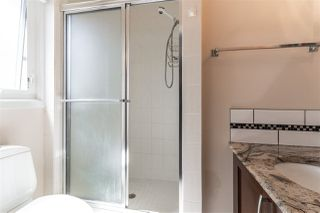 Photo 14: 14719 59 Avenue NW in Edmonton: Zone 14 House for sale : MLS®# E4199352