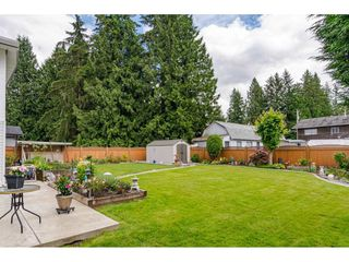 "Photo 18: 20544 42A Avenue in Langley: Brookswood Langley House for sale in ""Brookswood"" : MLS®# R2462311"