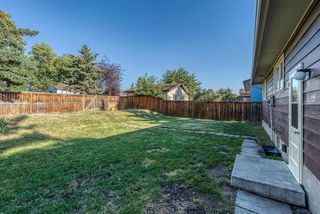 Photo 29: 236 QUEEN CHARLOTTE Way SE in Calgary: Queensland Detached for sale : MLS®# A1025137