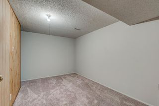 Photo 24: 236 QUEEN CHARLOTTE Way SE in Calgary: Queensland Detached for sale : MLS®# A1025137
