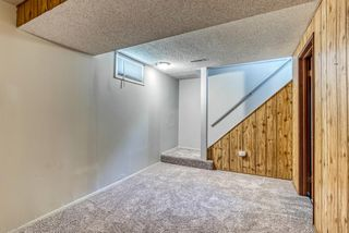 Photo 21: 236 QUEEN CHARLOTTE Way SE in Calgary: Queensland Detached for sale : MLS®# A1025137