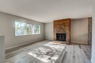 Photo 7: 236 QUEEN CHARLOTTE Way SE in Calgary: Queensland Detached for sale : MLS®# A1025137