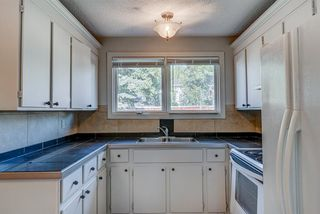 Photo 11: 236 QUEEN CHARLOTTE Way SE in Calgary: Queensland Detached for sale : MLS®# A1025137