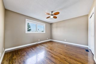 Photo 21: 2003 35 Street SE in Calgary: Southview Detached for sale : MLS®# A1027637