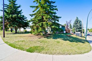 Photo 43: 2003 35 Street SE in Calgary: Southview Detached for sale : MLS®# A1027637