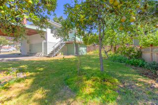 Photo 26: 550 E 58TH Avenue in Vancouver: South Vancouver House for sale (Vancouver East)  : MLS®# R2501108
