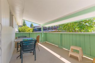 Photo 24: 550 E 58TH Avenue in Vancouver: South Vancouver House for sale (Vancouver East)  : MLS®# R2501108