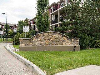 Photo 15: 135 2503 HANNA Crescent in Edmonton: Zone 14 Condo for sale : MLS®# E4169926