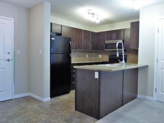 Photo 4: 204 103 AMBLESIDE Drive in Edmonton: Zone 56 Condo for sale : MLS®# E4188041