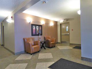 Photo 14: 204 103 AMBLESIDE Drive in Edmonton: Zone 56 Condo for sale : MLS®# E4188041