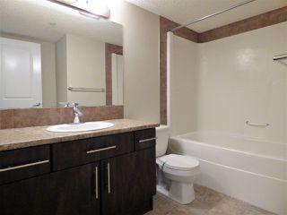 Photo 11: 204 103 AMBLESIDE Drive in Edmonton: Zone 56 Condo for sale : MLS®# E4188041