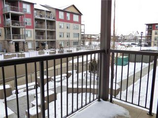 Photo 15: 204 103 AMBLESIDE Drive in Edmonton: Zone 56 Condo for sale : MLS®# E4188041
