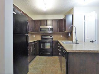 Photo 2: 204 103 AMBLESIDE Drive in Edmonton: Zone 56 Condo for sale : MLS®# E4188041