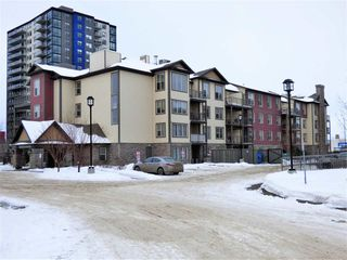 Photo 1: 204 103 AMBLESIDE Drive in Edmonton: Zone 56 Condo for sale : MLS®# E4188041