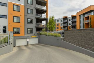 Photo 4: 235 503 Albany Way in Edmonton: Zone 27 Condo for sale : MLS®# E4211597
