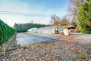Photo 16: 26863 20 AVENUE in Langley: Otter District House for sale : MLS®# R2420077
