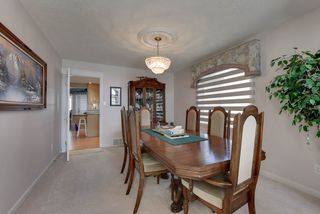 Photo 11: 1052 JAMES Crescent in Edmonton: Zone 29 House for sale : MLS®# E4199633