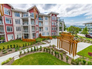 """Photo 33: 214 4211 BAYVIEW Street in Richmond: Steveston South Condo for sale in """"THE VILLAGE AT IMPERIAL LANDING"""" : MLS®# R2472507"""