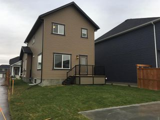 Photo 28: 43 Ravenstern Point SE: Airdrie Detached for sale : MLS®# A1033690