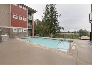 Photo 20: 110 2242 WHATCOM Road in Abbotsford: Abbotsford East Condo for sale : MLS®# R2399148