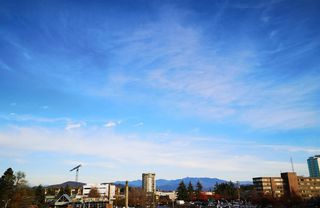 """Photo 19: 350 2821 TIMS Street in Abbotsford: Abbotsford West Condo for sale in """"Parkview Estates"""" : MLS®# R2418063"""