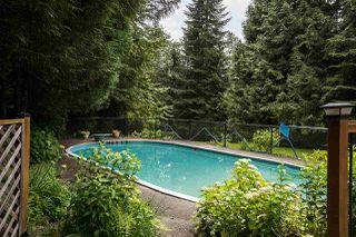 Photo 13: 23339 TAMARACK Lane in Maple Ridge: Albion House for sale : MLS®# R2471011