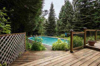 Photo 14: 23339 TAMARACK Lane in Maple Ridge: Albion House for sale : MLS®# R2471011