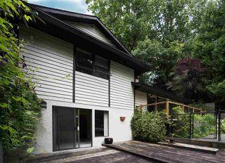 Photo 33: 23339 TAMARACK Lane in Maple Ridge: Albion House for sale : MLS®# R2471011