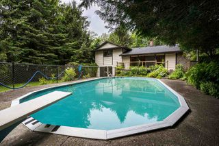 Photo 15: 23339 TAMARACK Lane in Maple Ridge: Albion House for sale : MLS®# R2471011