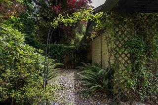 Photo 37: 23339 TAMARACK Lane in Maple Ridge: Albion House for sale : MLS®# R2471011
