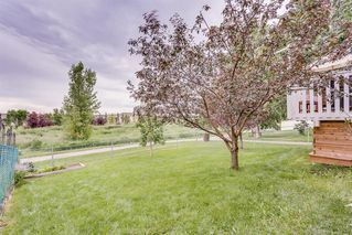 Photo 30: 31 SILVER CREEK Boulevard NW: Airdrie Detached for sale : MLS®# A1015467