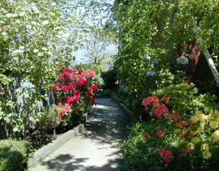 Photo 7: 106 1365 E 7TH AV in Vancouver: Grandview VE Condo for sale (Vancouver East)  : MLS®# V590037