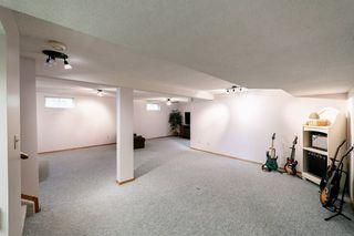 Photo 26: 14 Alphonse Court: St. Albert House for sale : MLS®# E4170959