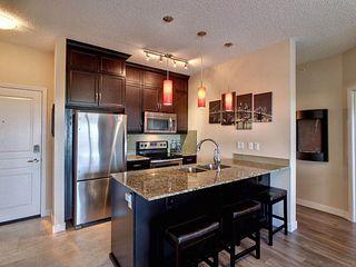 Photo 6: 418 7021 South Terwillegar Drive in Edmonton: Zone 14 Condo for sale : MLS®# E4188239