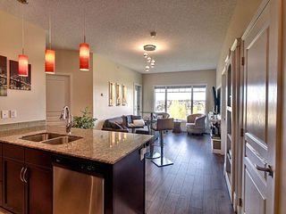 Photo 12: 418 7021 South Terwillegar Drive in Edmonton: Zone 14 Condo for sale : MLS®# E4188239