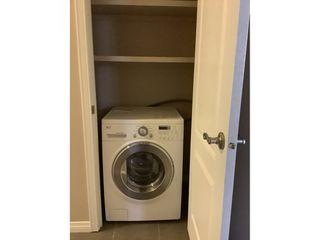 Photo 8: 9925 83 Avenue in Edmonton: Condo for rent